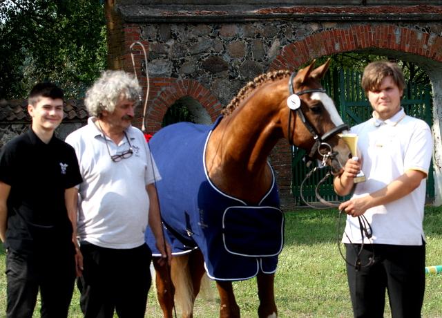 5fd134c4890 Selgusid parimad noorhobused 2015.aasta sünnist ning seda täkkude ja märade  arvestuses. Tõuraamatu universaalse suunas konkureerisid kuus noort hobust,  ...